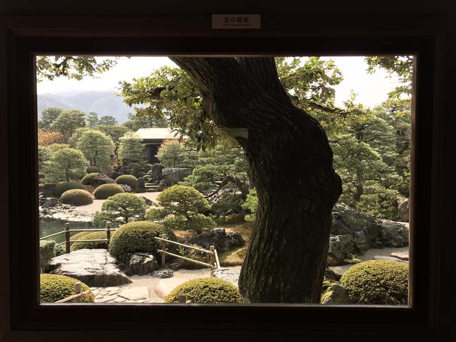 giappone-tour-adachi-museo