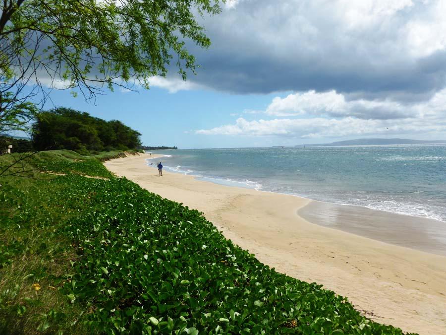hawaii-maui-lahaina