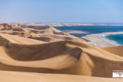tour-safari-namibia-namib
